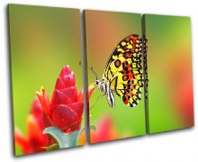 Butterfly Flowers Animals - 13-1554(00B)-TR32-LO